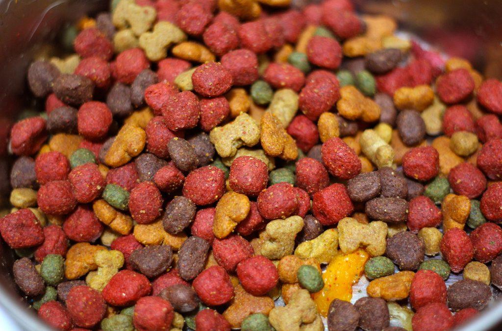 Come leggere la lista degli ingredienti degli alimenti per cani e gatti