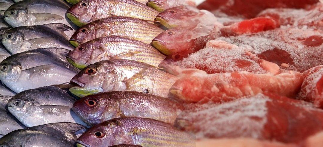 Tempi di Congelamento della Carne e del Pesce crudi: quanto congelare per fornirli al cane e al gatto senza parassiti?